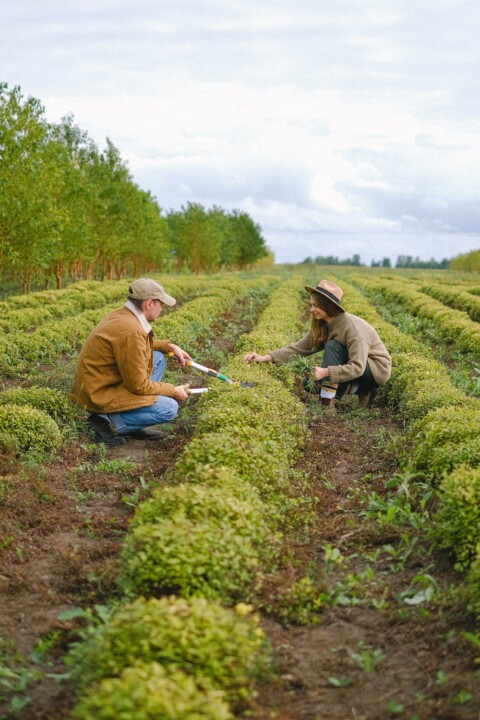 Agriculture, Conservation and Sustainability: An Overview